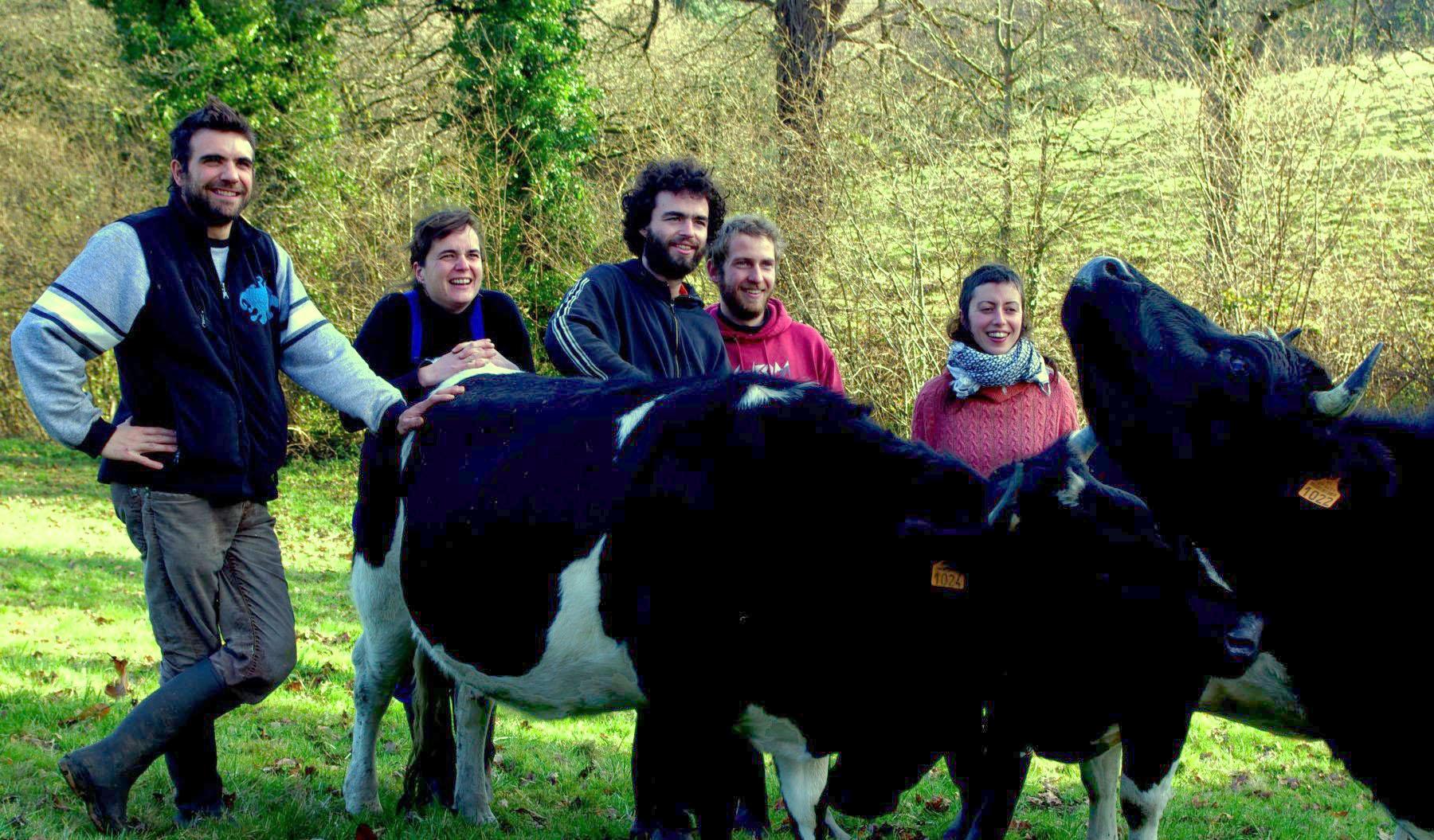 Le club des 5 et ses vaches